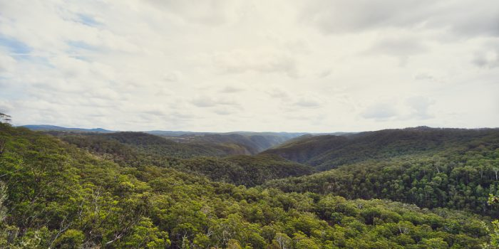 Cathedral Rock National Park Lookout View