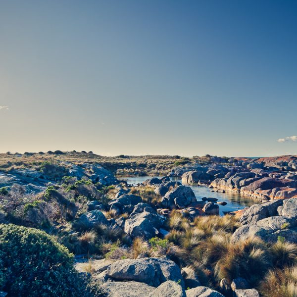 Just One More Bay of Fires Shot